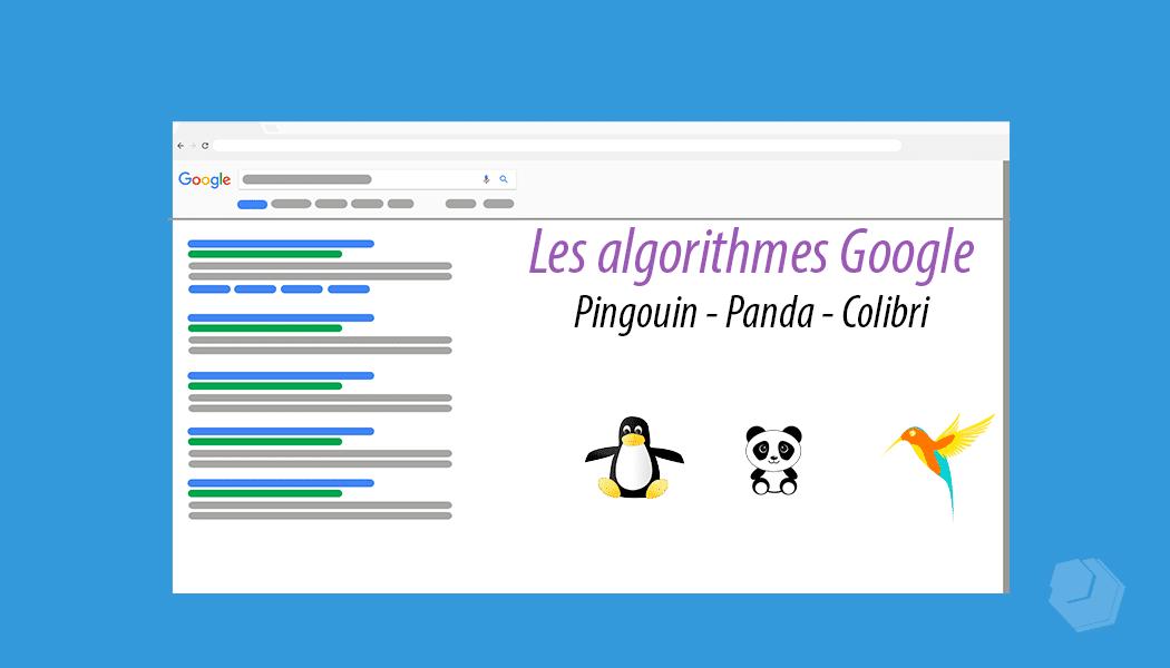 Les algorithmes Pingouin, Panda et Colibri
