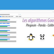 Les algorithmes Google - Colibri, Pingouin et Panda pour le référencement naturel