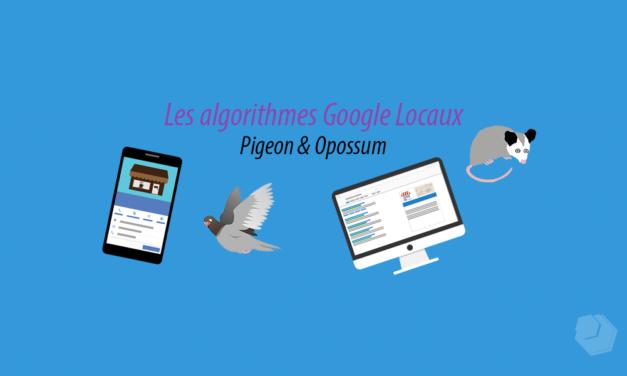 Les algorithmes locaux Google : Pigeon et Opossum