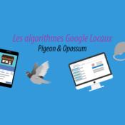 Les algorithme locaux Google pigeon et opossum