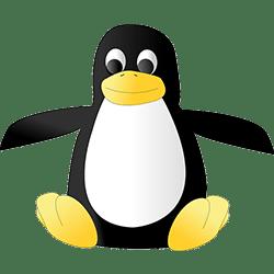 Pingouin algorithme google